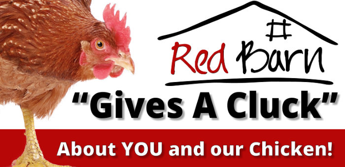 give a cluck for chicken